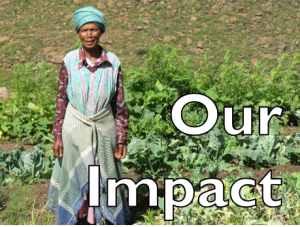 Help Lesotho Our Impact