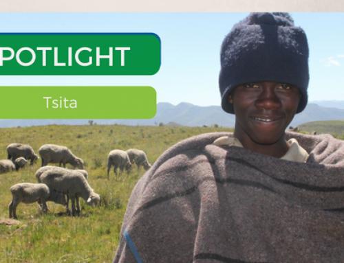 Spotlight: Tsita