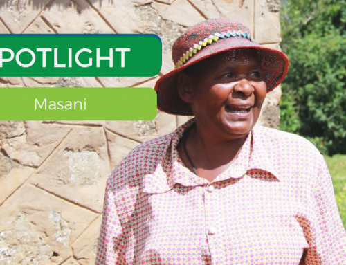 Spotlight: Masani