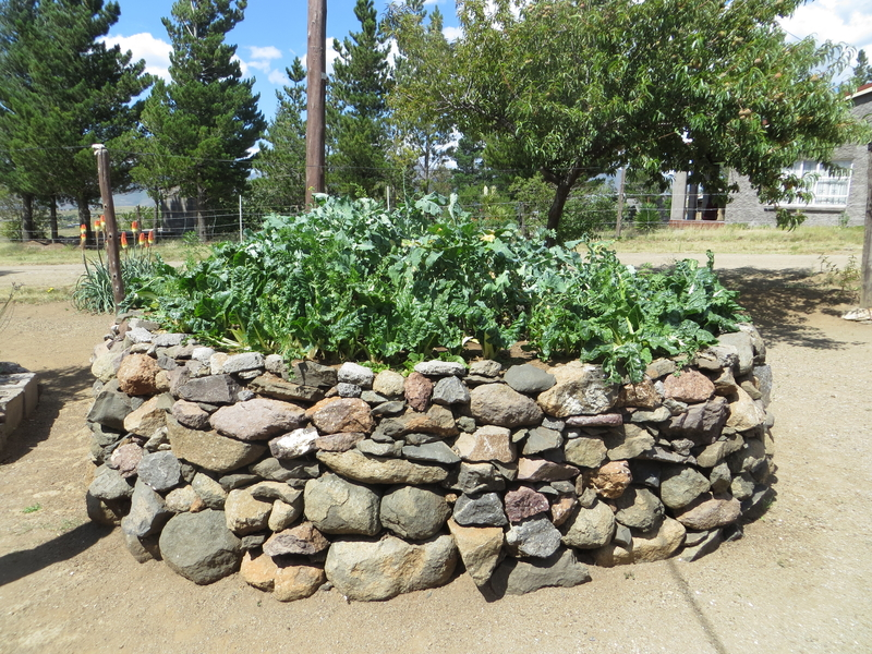 How Keyhole Gardens Are Helping the Battle Against HIV/AIDS - Help ...